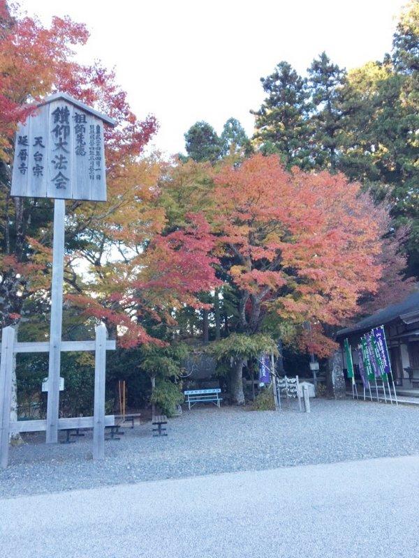 比叡山2015.11.5