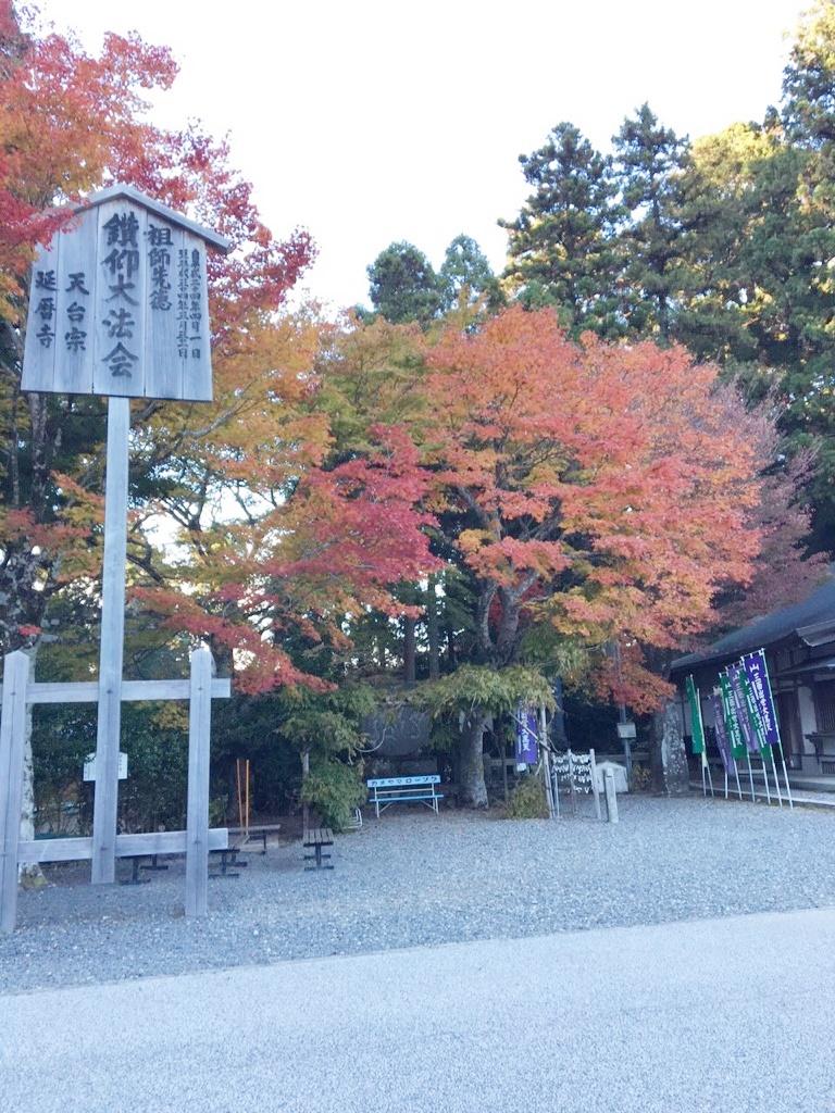 比叡山、紅葉はじまりました♪