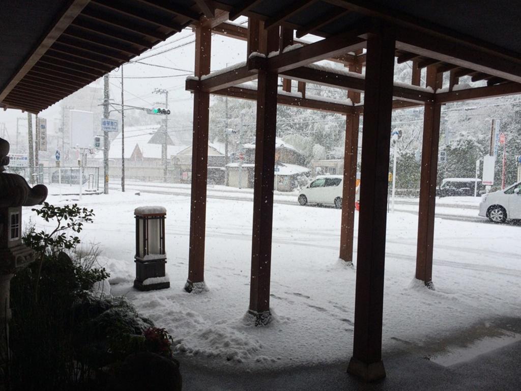 この冬初めての雪です***