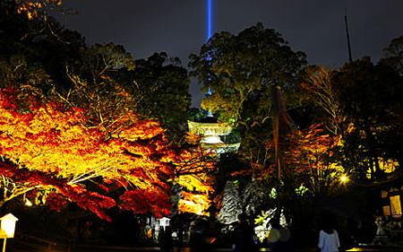 京都・滋賀の紅葉状況(2015年11月17日現在)