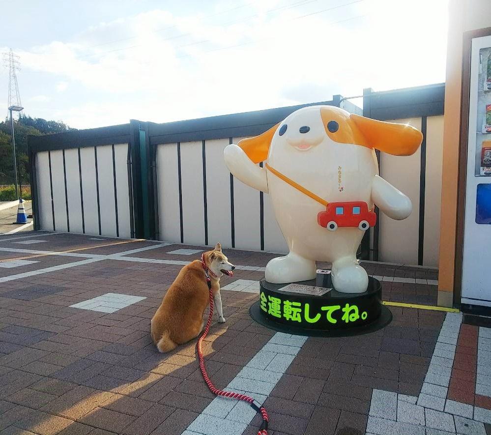 舞子、東京へ行く♪