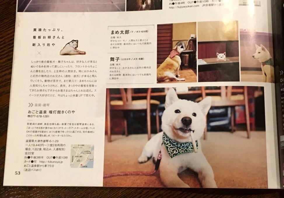 "SAVVY ""モフモフ動物図鑑""に載りました♪"
